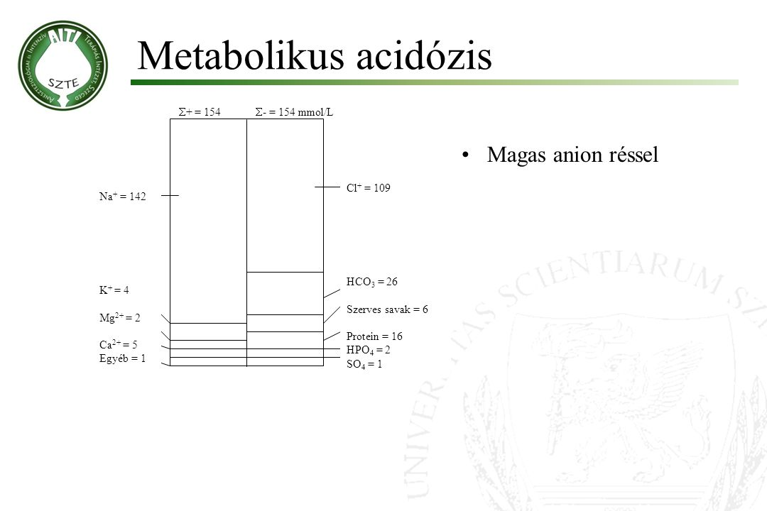 Metabolikus acidózis Magas anion réssel + = 154 - = 154 mmol/L