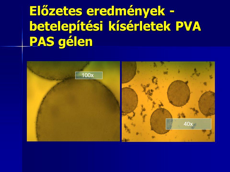 Előzetes eredmények - betelepítési kísérletek PVA PAS gélen