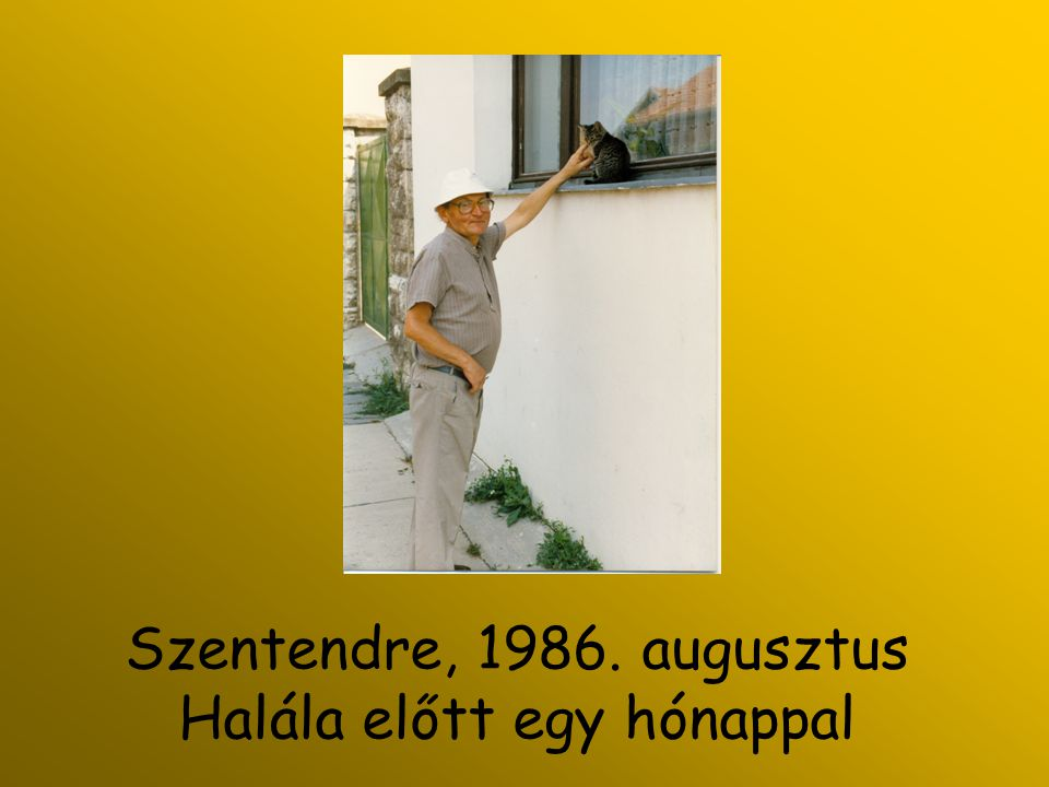 Szentendre, 1986. augusztus Halála előtt egy hónappal