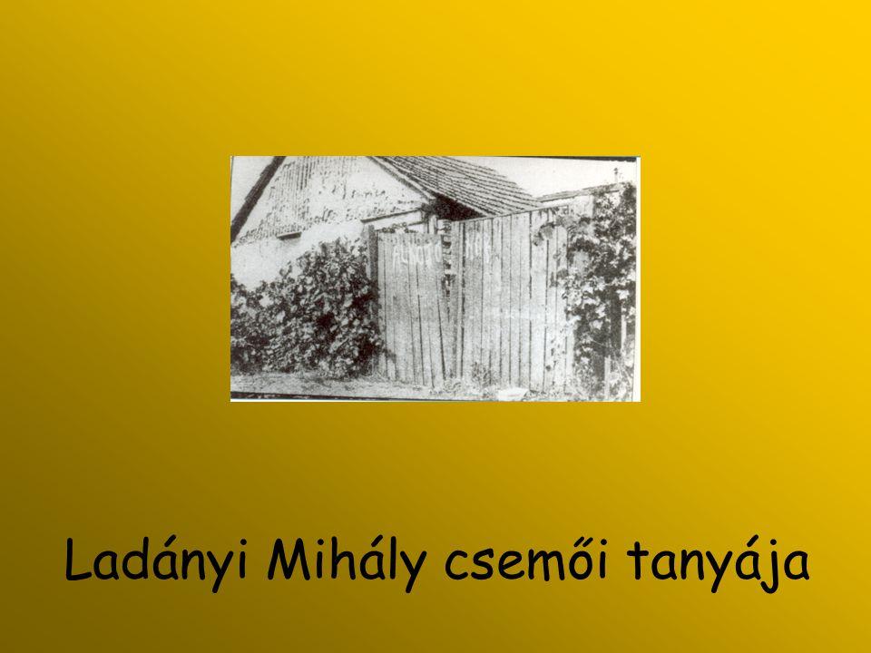 Ladányi Mihály csemői tanyája
