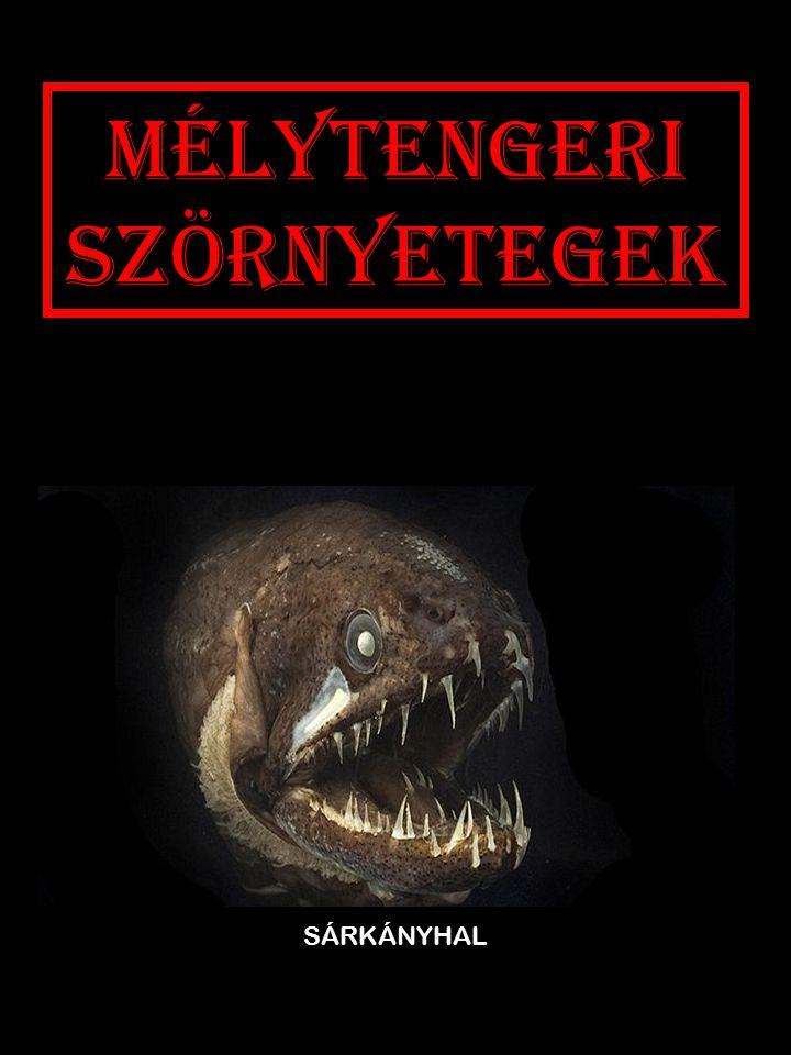 Mélytengeri szörnyetegek