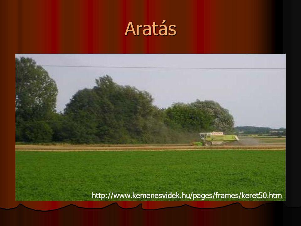 Aratás http://www.kemenesvidek.hu/pages/frames/keret50.htm