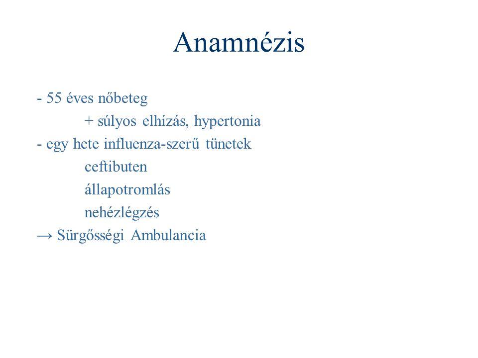 Anamnézis - 55 éves nőbeteg + súlyos elhízás, hypertonia