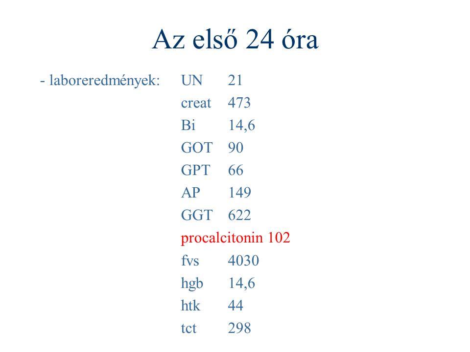 Az első 24 óra - laboreredmények: UN 21 creat 473 Bi 14,6 GOT 90