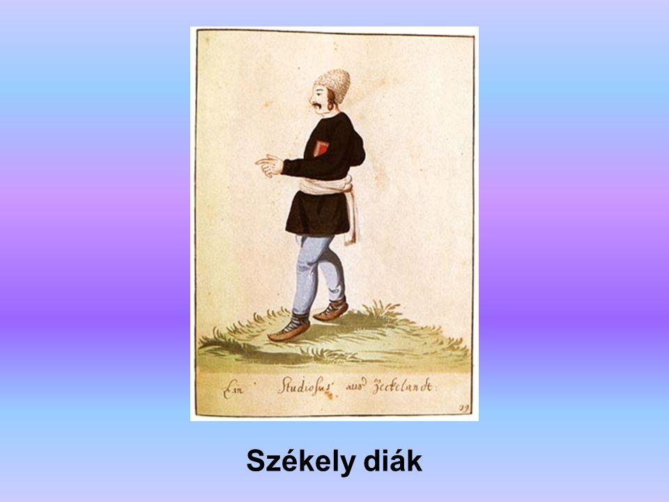 Székely diák A forrás: Erdély története (főszerkesztő: Köpeczi Béla)