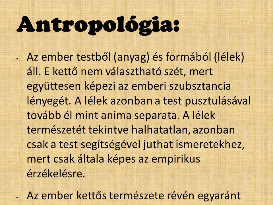 Antropológia: