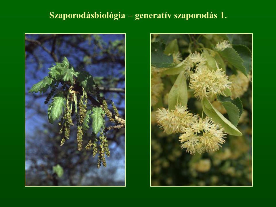 Szaporodásbiológia – generatív szaporodás 1.