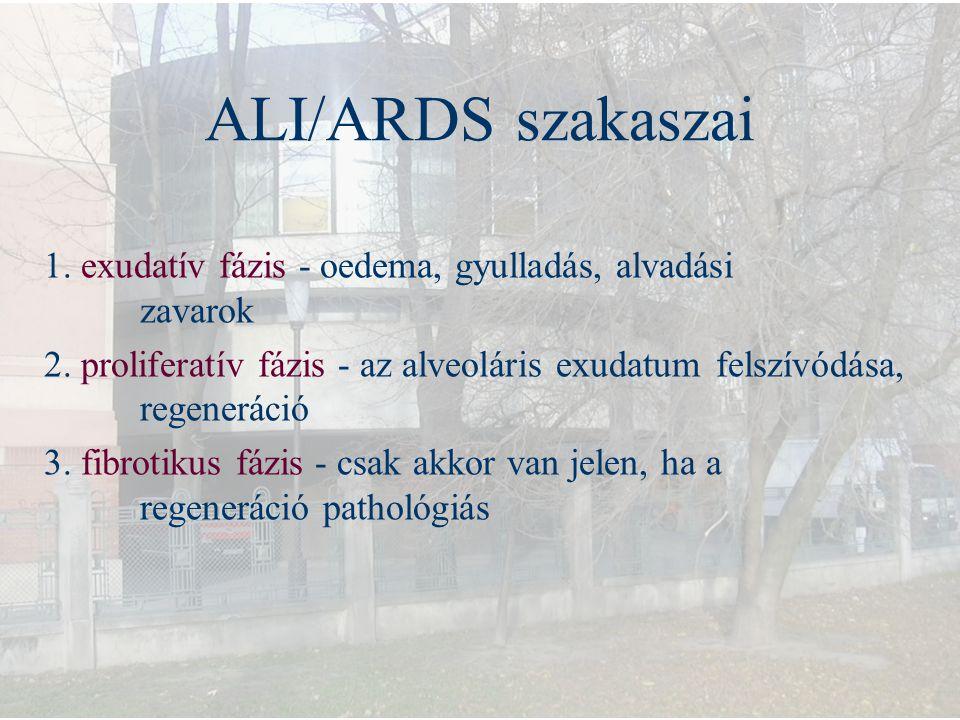 ALI/ARDS szakaszai 1. exudatív fázis - oedema, gyulladás, alvadási zavarok.