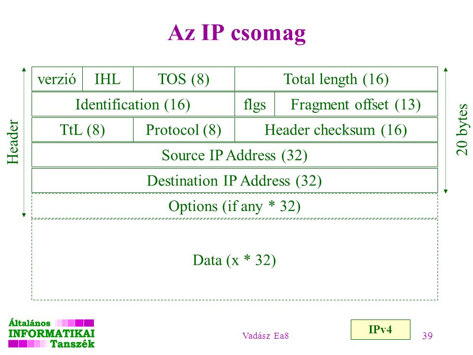 Destination IP Address (32)