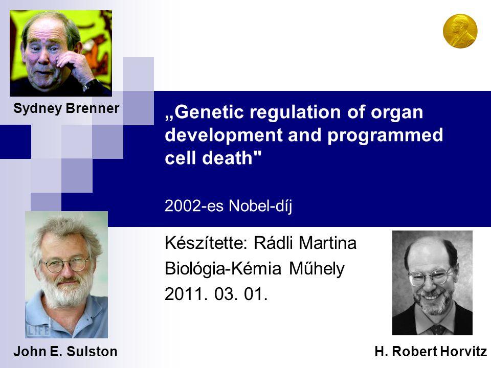 Készítette: Rádli Martina Biológia-Kémia Műhely 2011. 03. 01.