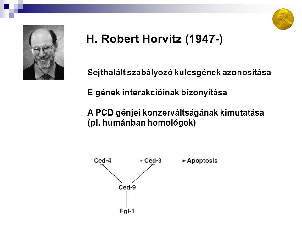 H. Robert Horvitz (1947-) Sejthalált szabályozó kulcsgének azonosítása