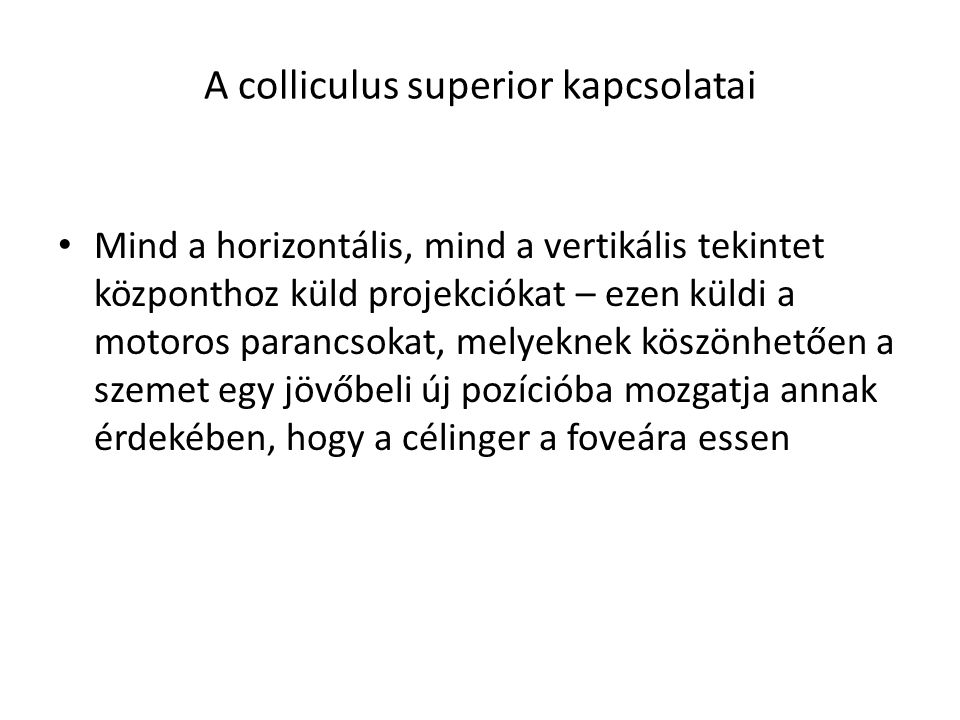 A colliculus superior kapcsolatai