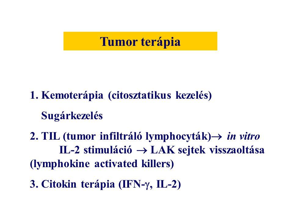 Tumor terápia 1. Kemoterápia (citosztatikus kezelés) Sugárkezelés