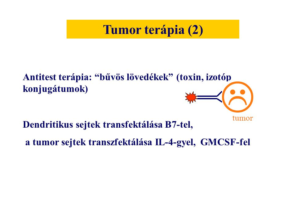 Tumor terápia (2) Antitest terápia: bűvös lövedékek (toxin, izotóp konjugátumok) Dendritikus sejtek transfektálása B7-tel,