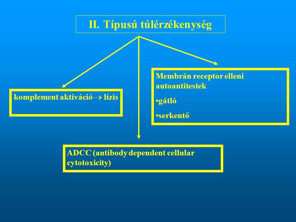 II. Típusú túlérzékenység komplement aktiváció  lízis
