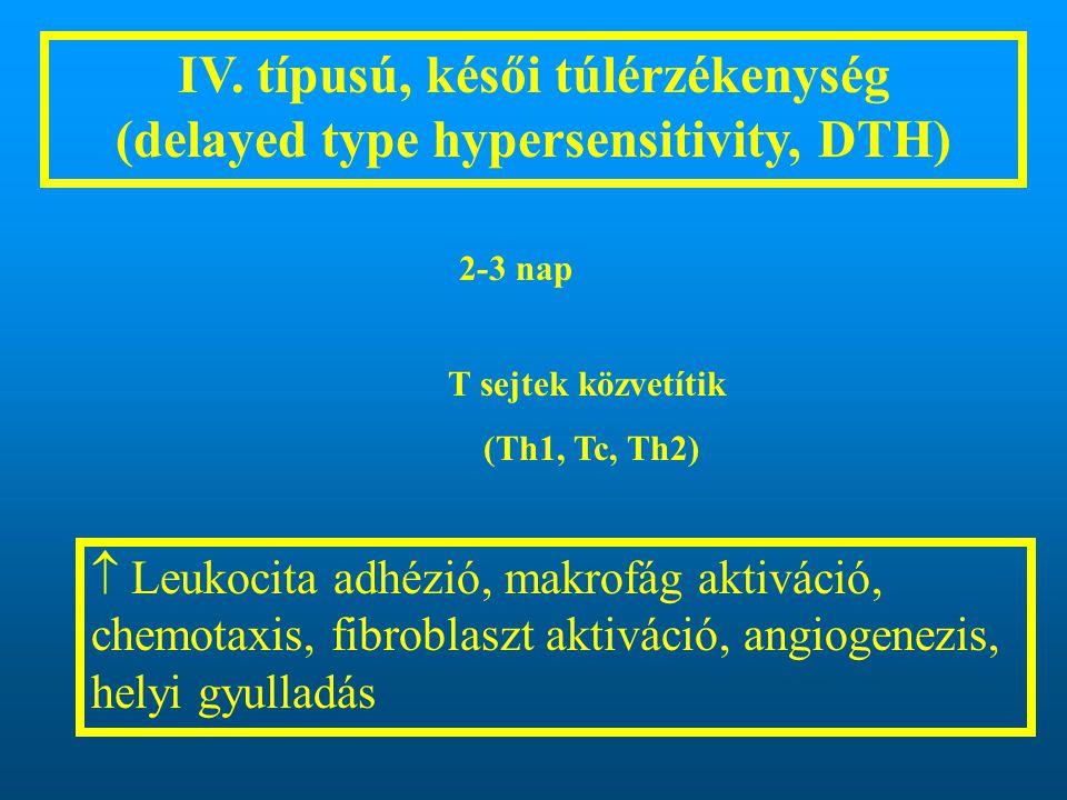 IV. típusú, késői túlérzékenység (delayed type hypersensitivity, DTH)