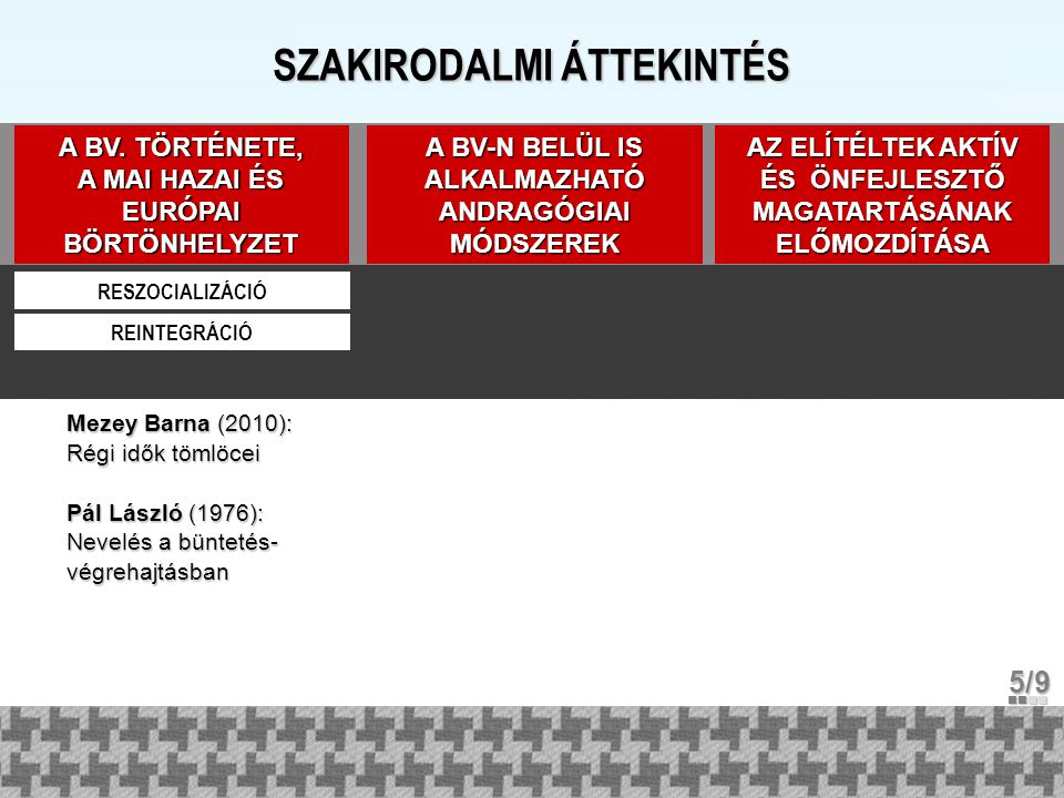 SZAKIRODALMI ÁTTEKINTÉS