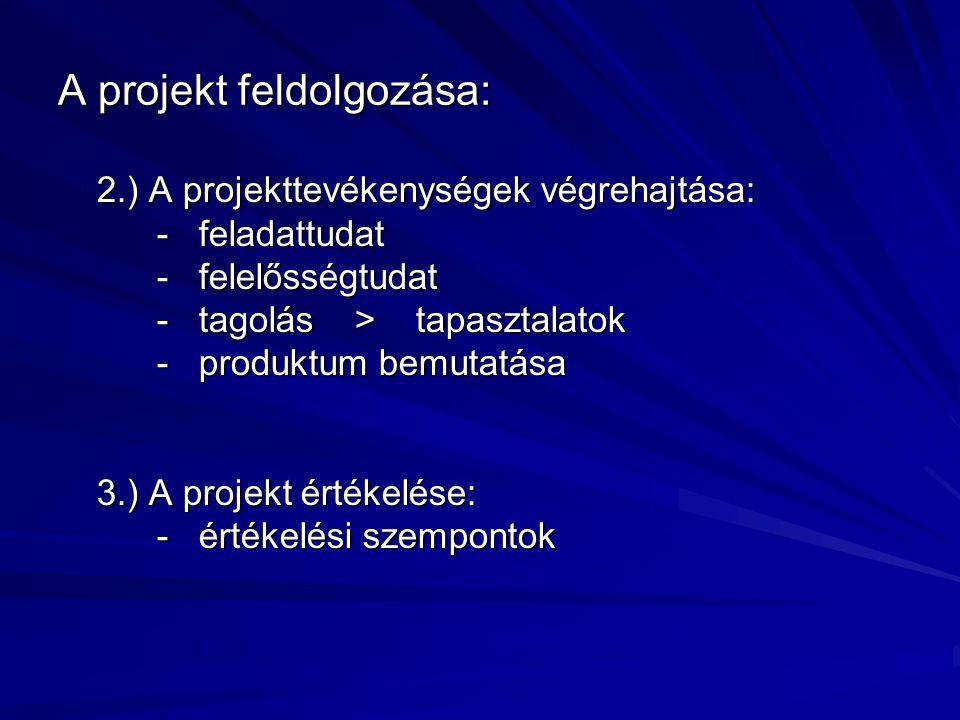 A projekt feldolgozása: