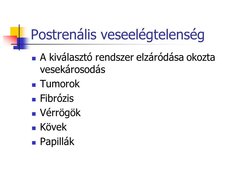 Postrenális veseelégtelenség