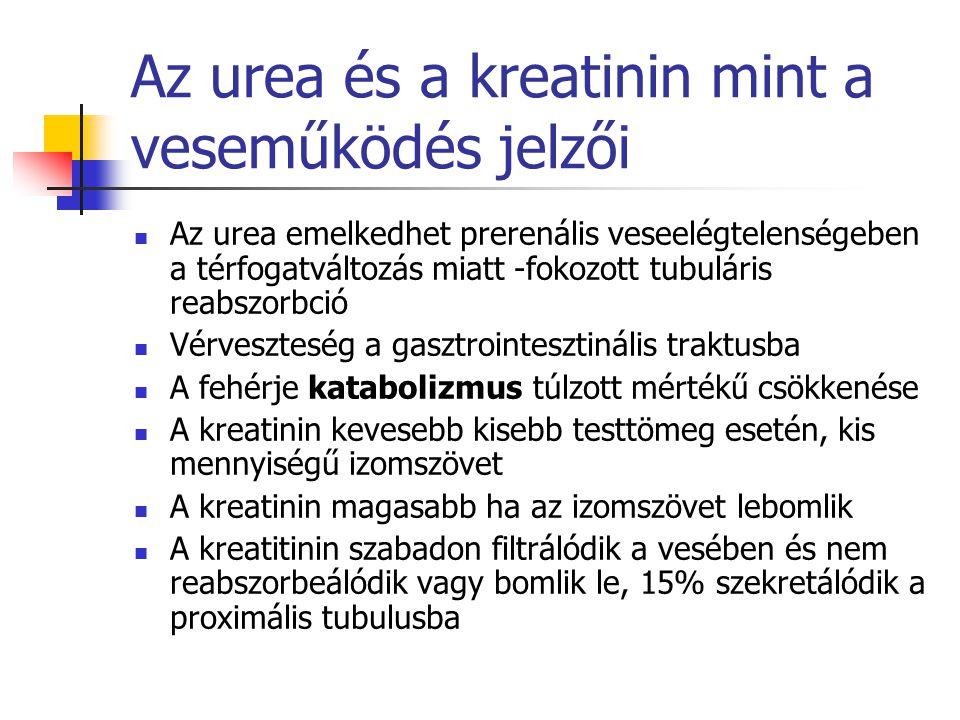 Az urea és a kreatinin mint a veseműködés jelzői