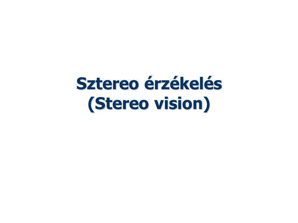 Sztereo érzékelés (Stereo vision)