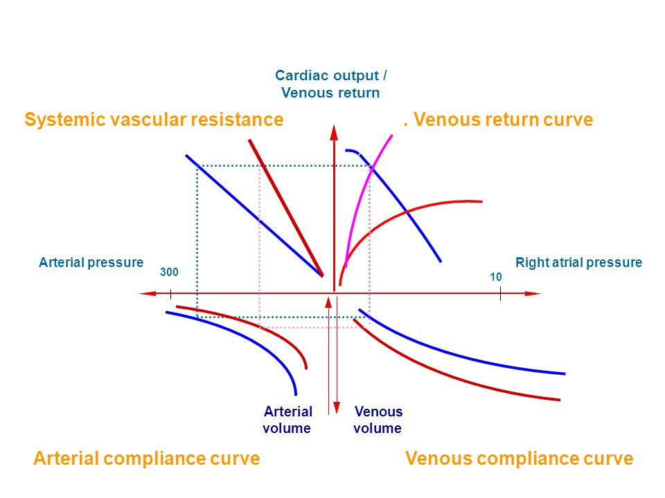 Systemic vascular resistance . Venous return curve