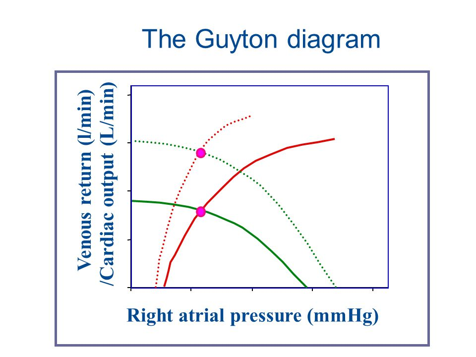 The Guyton diagram Venous return (l/min) /Cardiac output (L/min)
