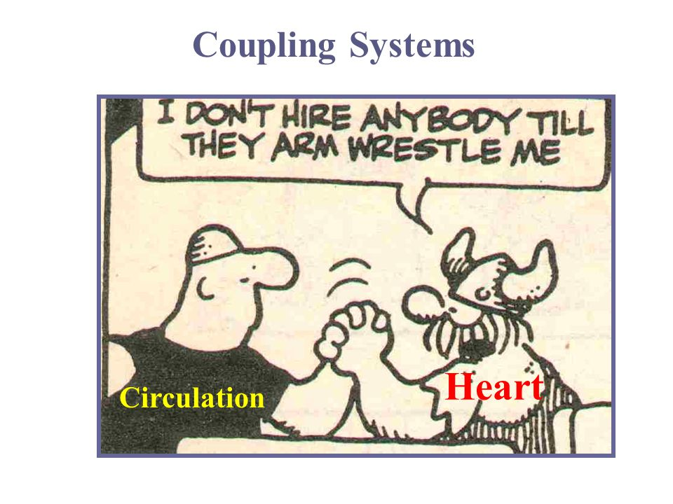 Coupling Systems Heart Circulation