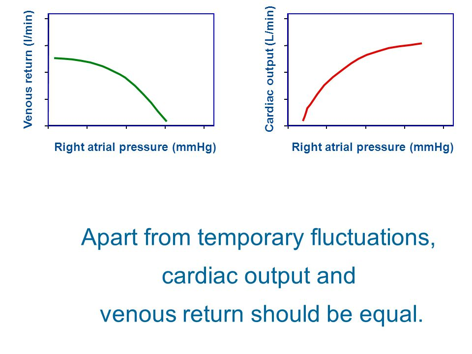 Apart from temporary fluctuations, cardiac output and