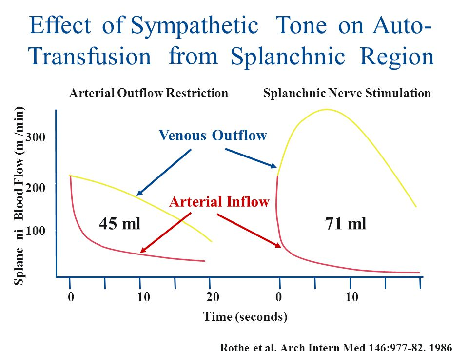 Effect of Sympathetic Tone on Auto- Transfusion from Splanchnic Region