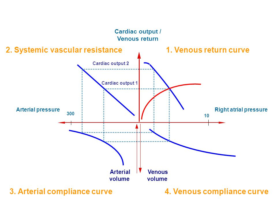 2. Systemic vascular resistance 1. Venous return curve