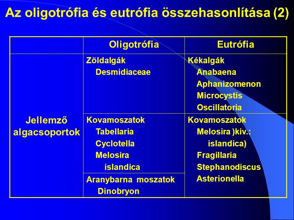 Az oligotrófia és eutrófia összehasonlítása (2)