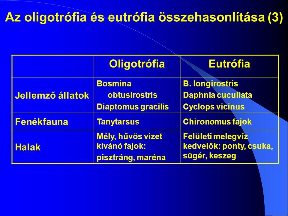 Az oligotrófia és eutrófia összehasonlítása (3)