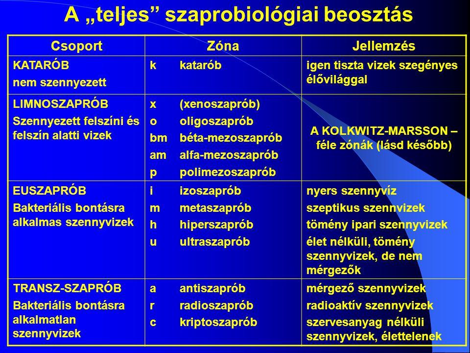 """A """"teljes szaprobiológiai beosztás"""