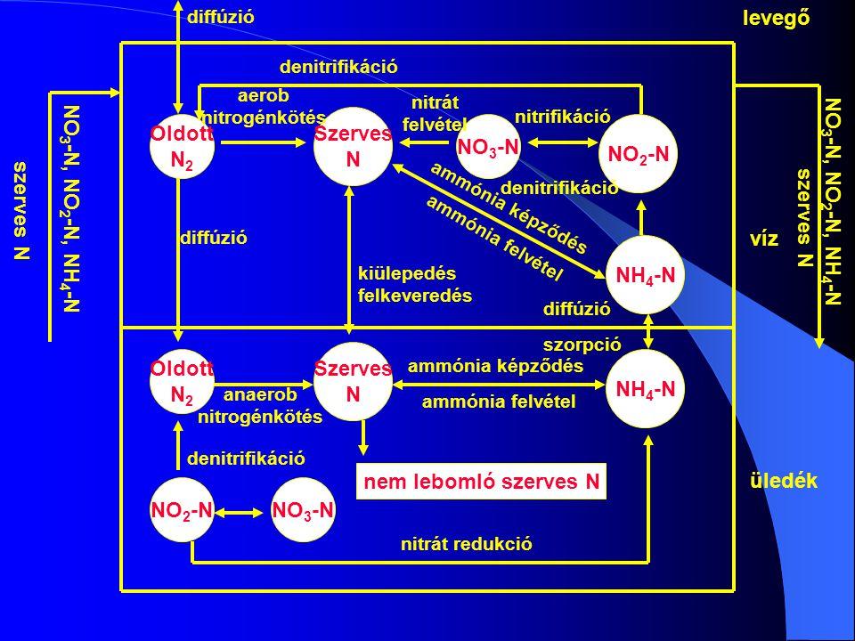 Oldott N2 Szerves N NO3-N NO2-N NH4-N nem lebomló szerves N