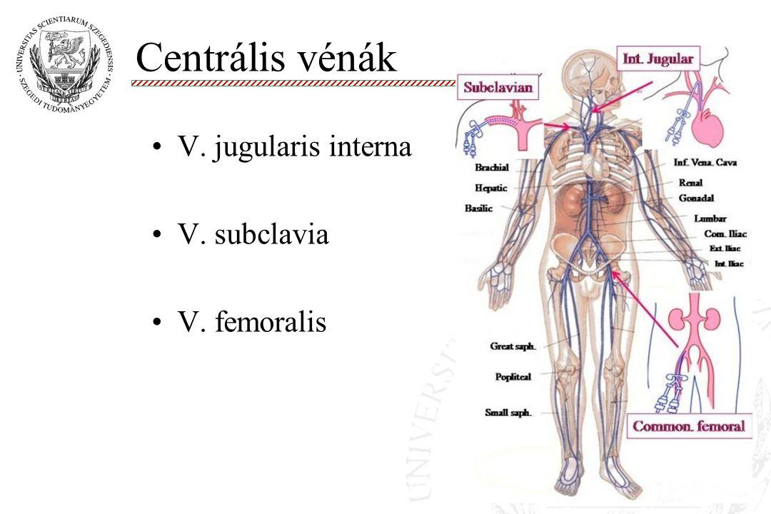 Centrális vénák V. jugularis interna V. subclavia V. femoralis