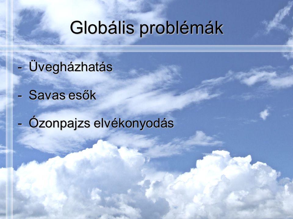Globális problémák Üvegházhatás Savas esők Ózonpajzs elvékonyodás