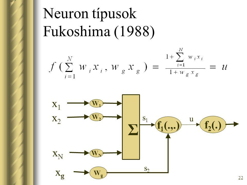 Neuron típusok Fukoshima (1988)