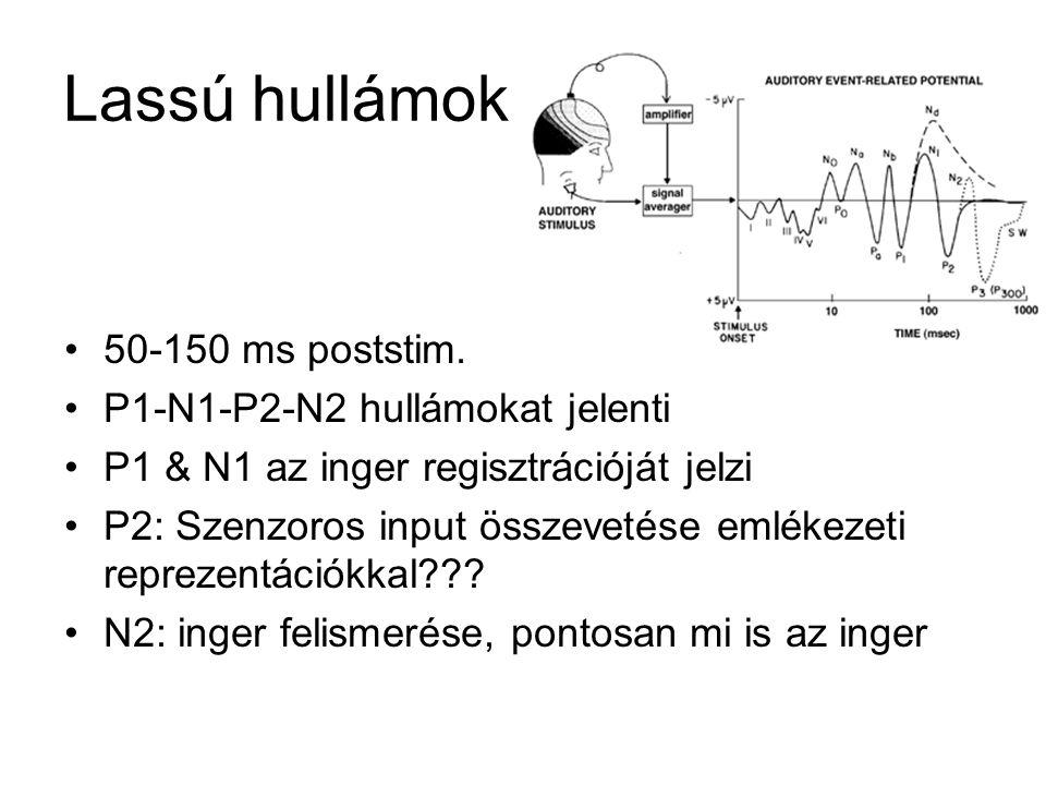 Lassú hullámok 50-150 ms poststim. P1-N1-P2-N2 hullámokat jelenti