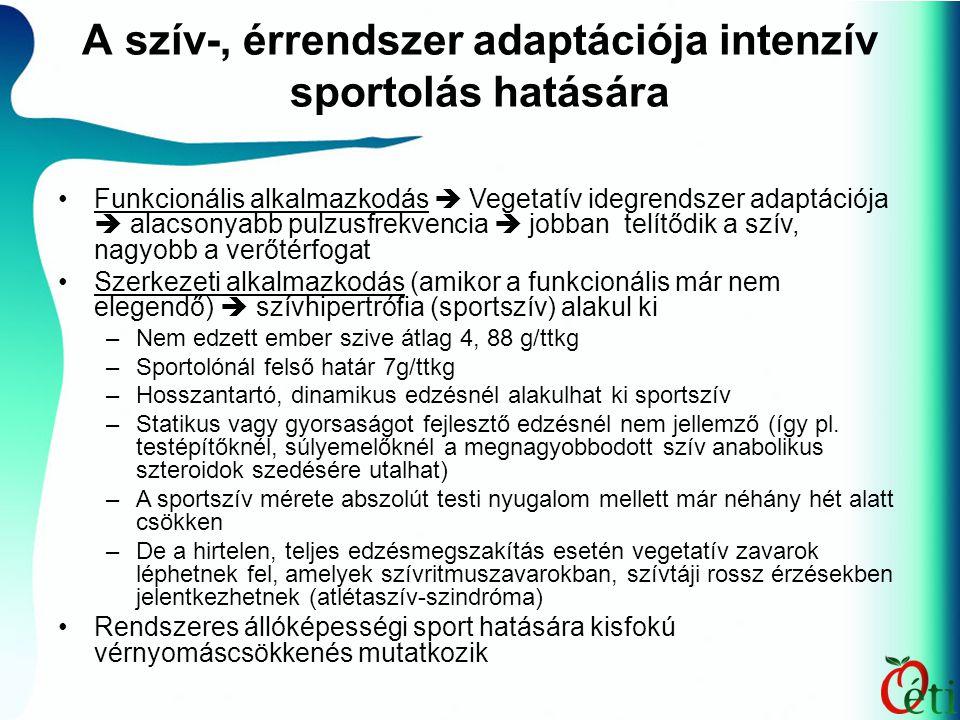 A szív-, érrendszer adaptációja intenzív sportolás hatására