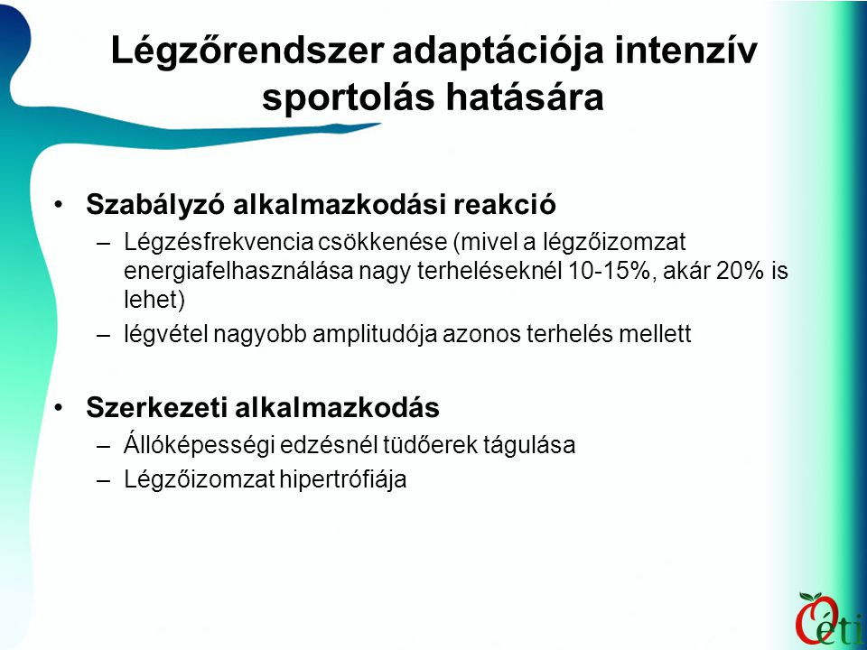 Légzőrendszer adaptációja intenzív sportolás hatására