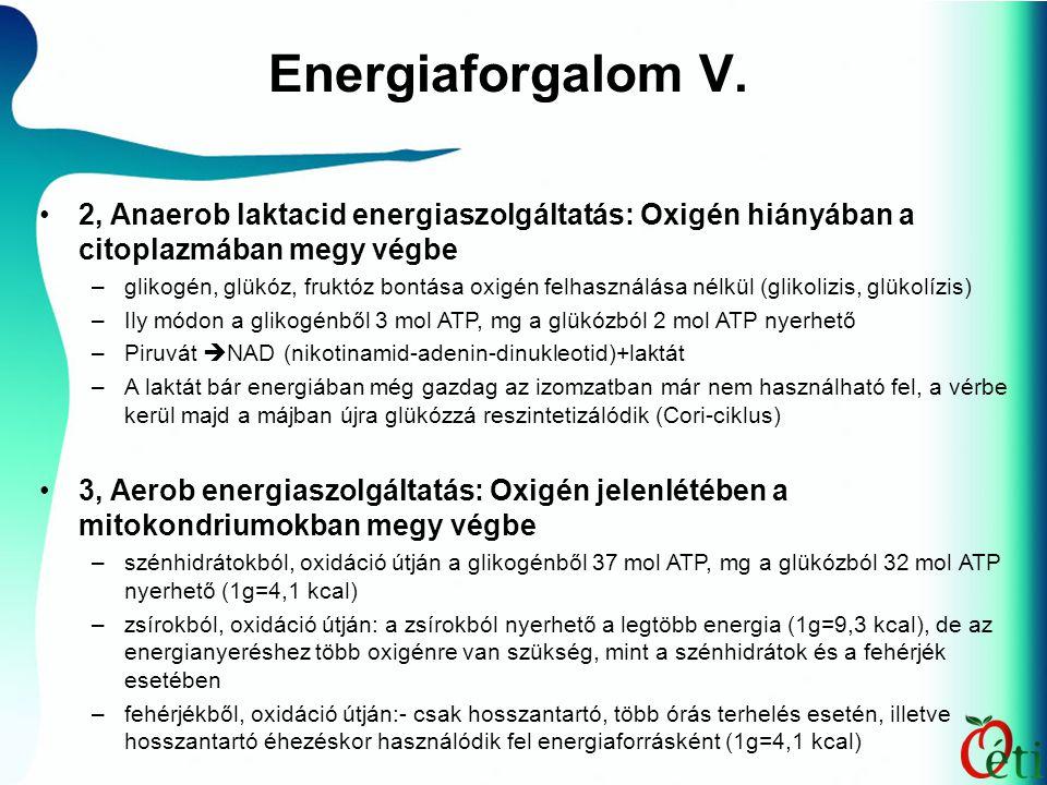Energiaforgalom V. 2, Anaerob laktacid energiaszolgáltatás: Oxigén hiányában a citoplazmában megy végbe.