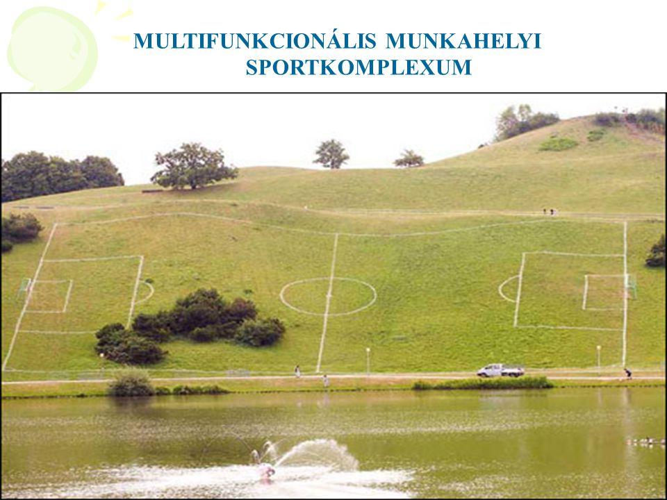 MULTIFUNKCIONÁLIS MUNKAHELYI SPORTKOMPLEXUM
