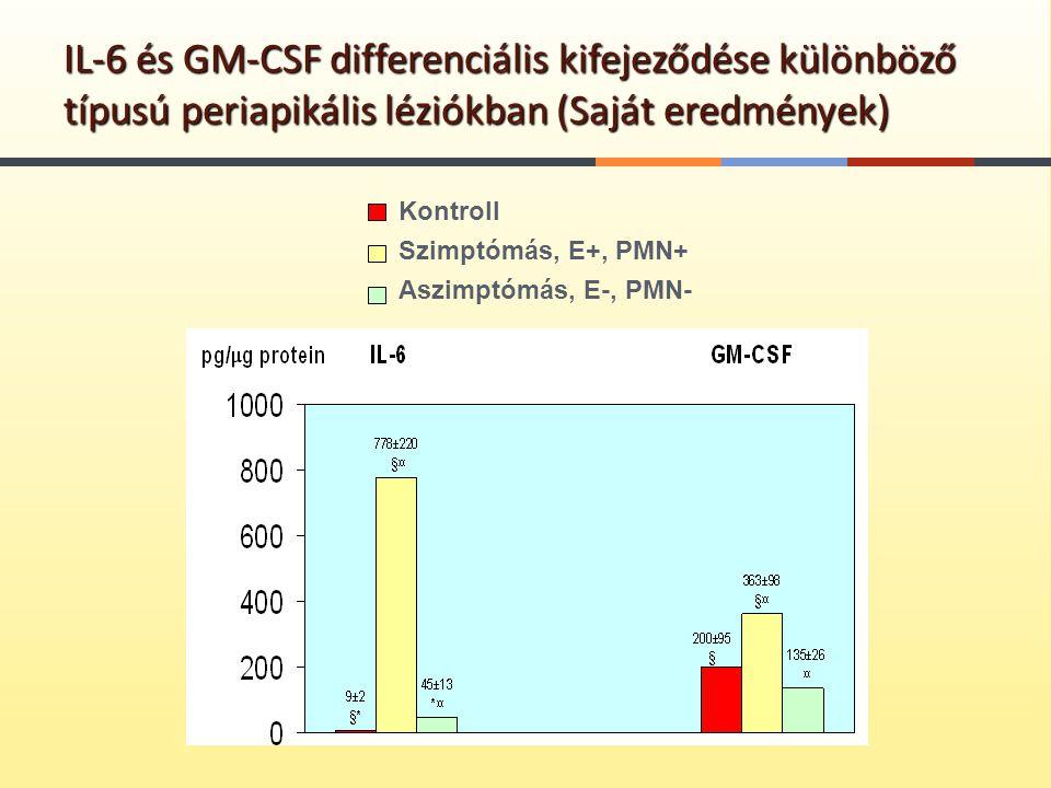 IL-6 és GM-CSF differenciális kifejeződése különböző típusú periapikális léziókban (Saját eredmények)