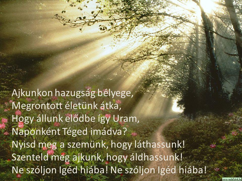 Ajkunkon hazugság bélyege, Megrontott életünk átka, Hogy állunk elődbe így Uram, Naponként Téged imádva.
