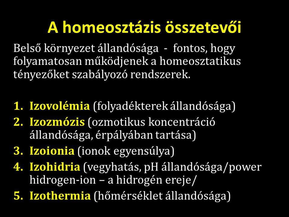 A homeosztázis összetevői