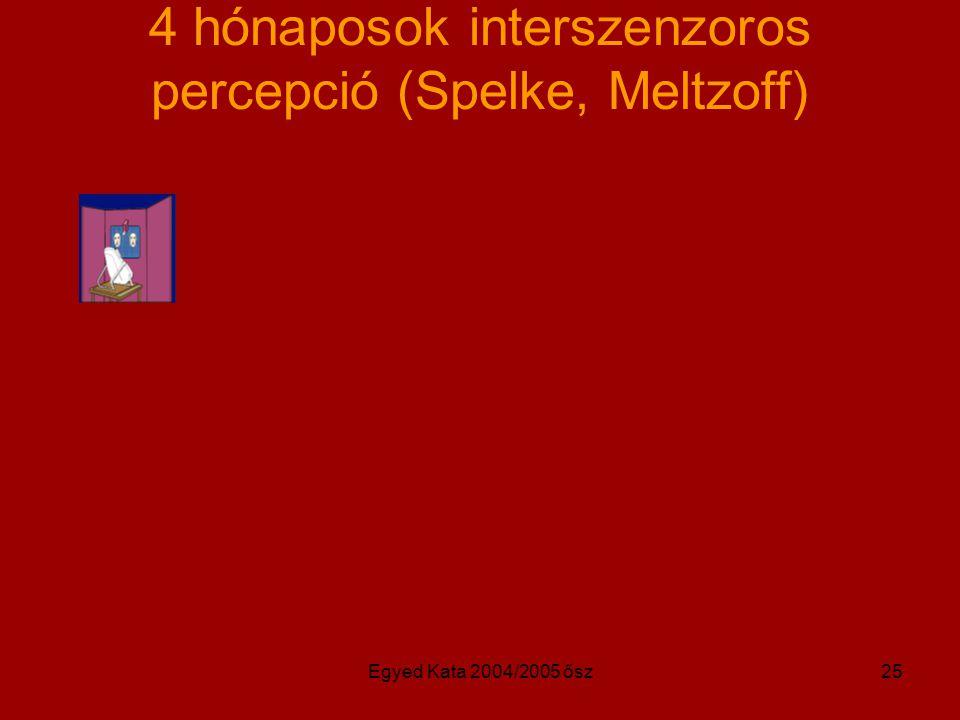 4 hónaposok interszenzoros percepció (Spelke, Meltzoff)