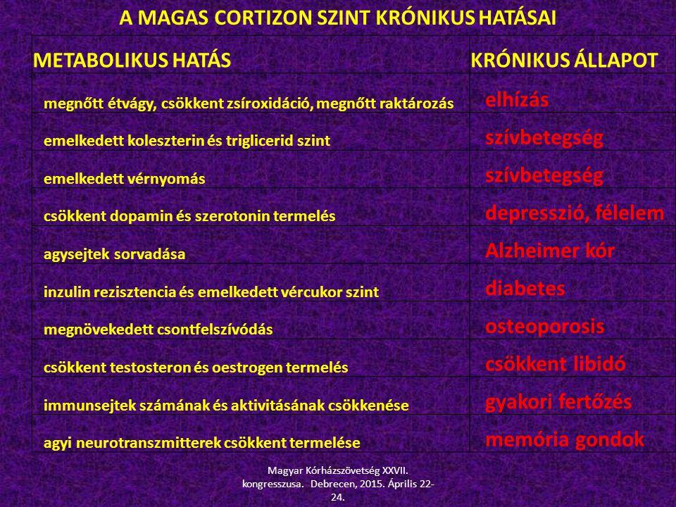 A MAGAS CORTIZON SZINT KRÓNIKUS HATÁSAI