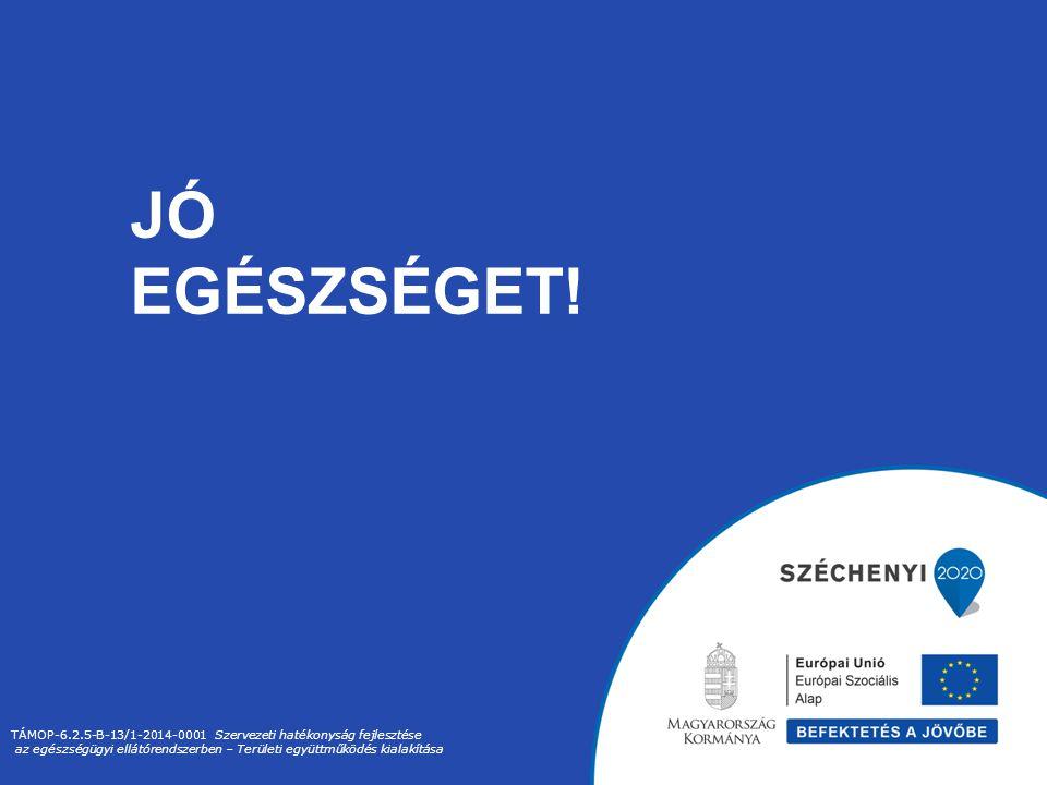Jó Egészséget! TÁMOP-6.2.5-B-13/1-2014-0001 Szervezeti hatékonyság fejlesztése.