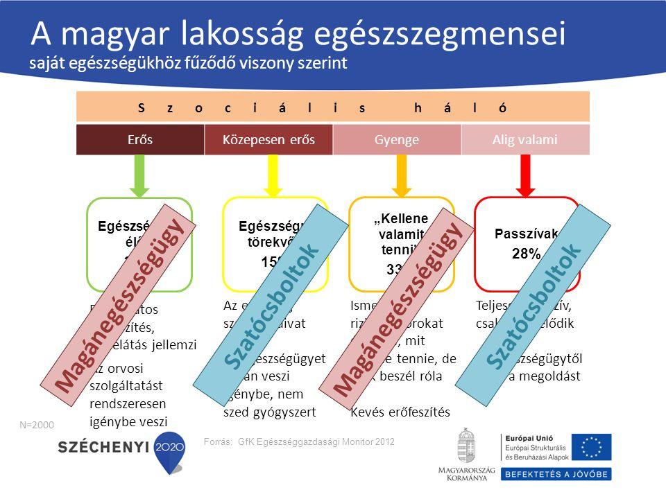 A magyar lakosság egészszegmensei